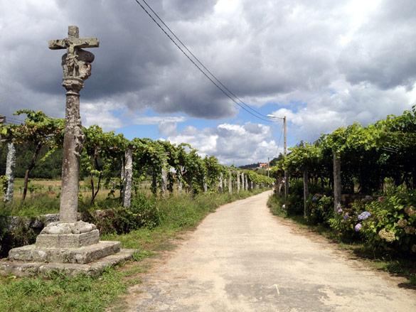 El Camino Portugués a Santiago